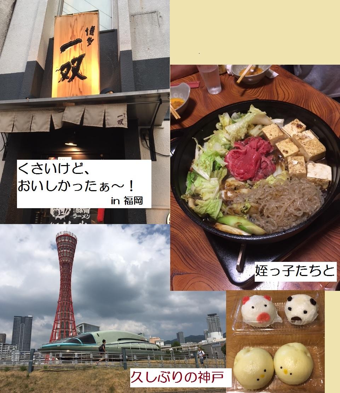 大阪市城東区シュウケン工業 夏の思い出3